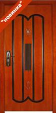 стальные двери новинка